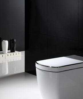 i.toilet